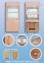 Мебель для специализированных и компьютерных кабинетов Шкаф вытяжной  для кабинета химии